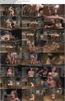 http://t4.pixhost.to/show/703/10927330_intotheattic_09-03-2009-elizabeth_s.jpg