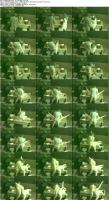 http://t4.pixhost.to/show/713/10955740_caugtonspycams_29_pornrip-org_s.jpg